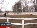 Новости Житомирского региона 21-10-2013